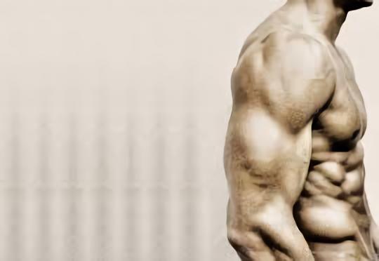 筋肉00.png