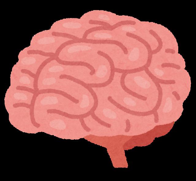 body_brain_nou.png
