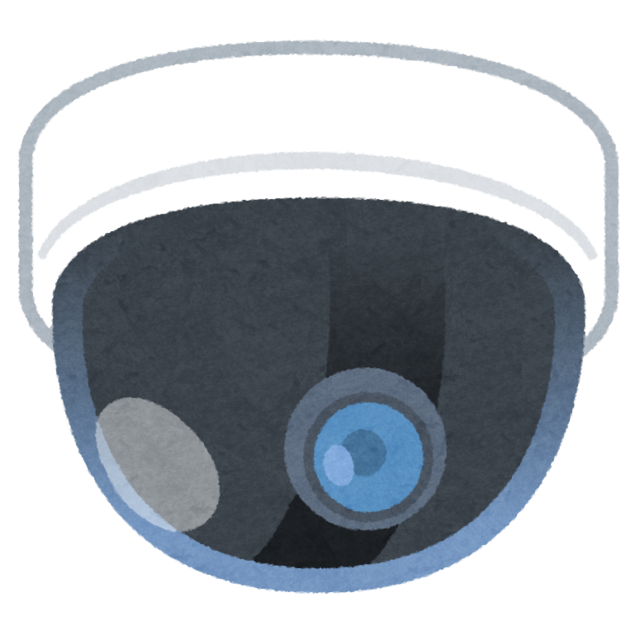 bouhan_camera_dome.png