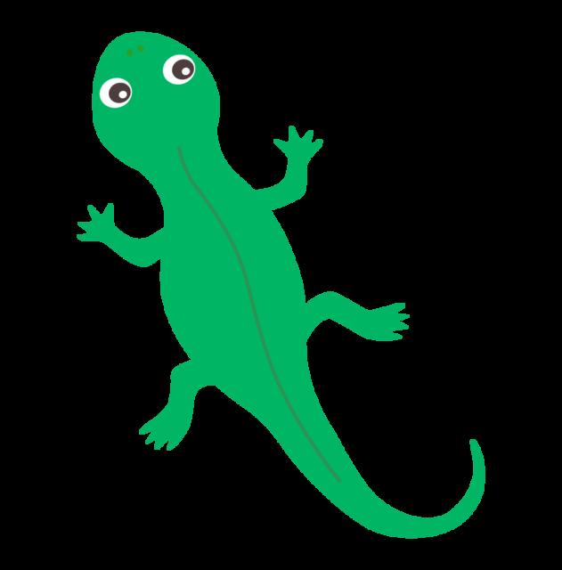 cute_tokage_lizard_8594.png