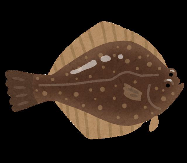 fish_sakana_karei.png